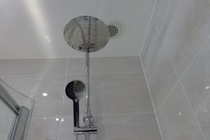 Tavistock Quantum Thermostatic shower