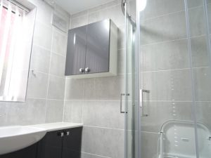 Shower Room with wall cabinet