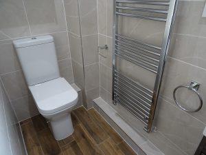 Tavistock Structure Toilet in ensuite shower room